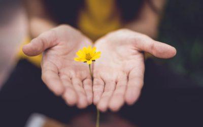A tettes-áldozat helyzetek kulcsfigurája – a tanú